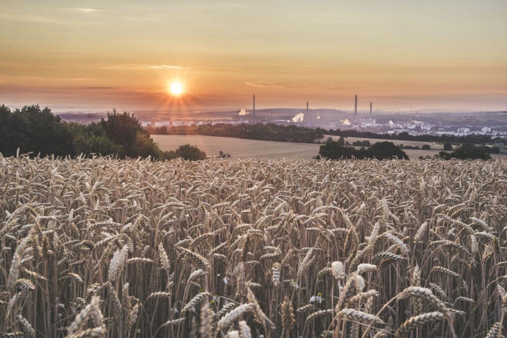 Fotografie východu slunce s továrnou